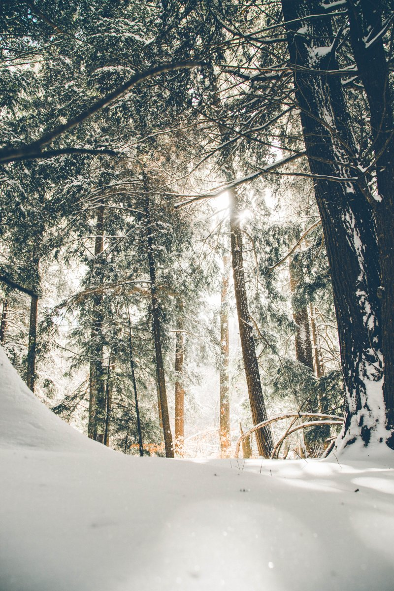 7 Ways to Embrace Winter as a Highly Sensitive Person